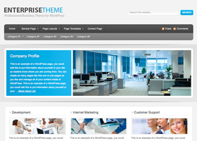 Enterprise Child Theme